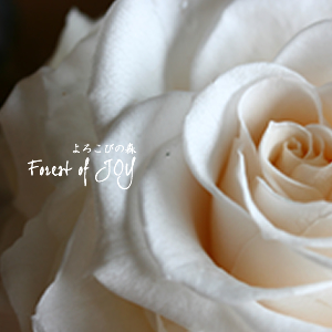 プリザーブドフラワー | プリザーブドフラワー 開花レッスン