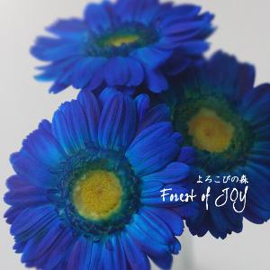 プリザーブドフラワー | プリザーブドフラワー 青(水色)のガーベラ